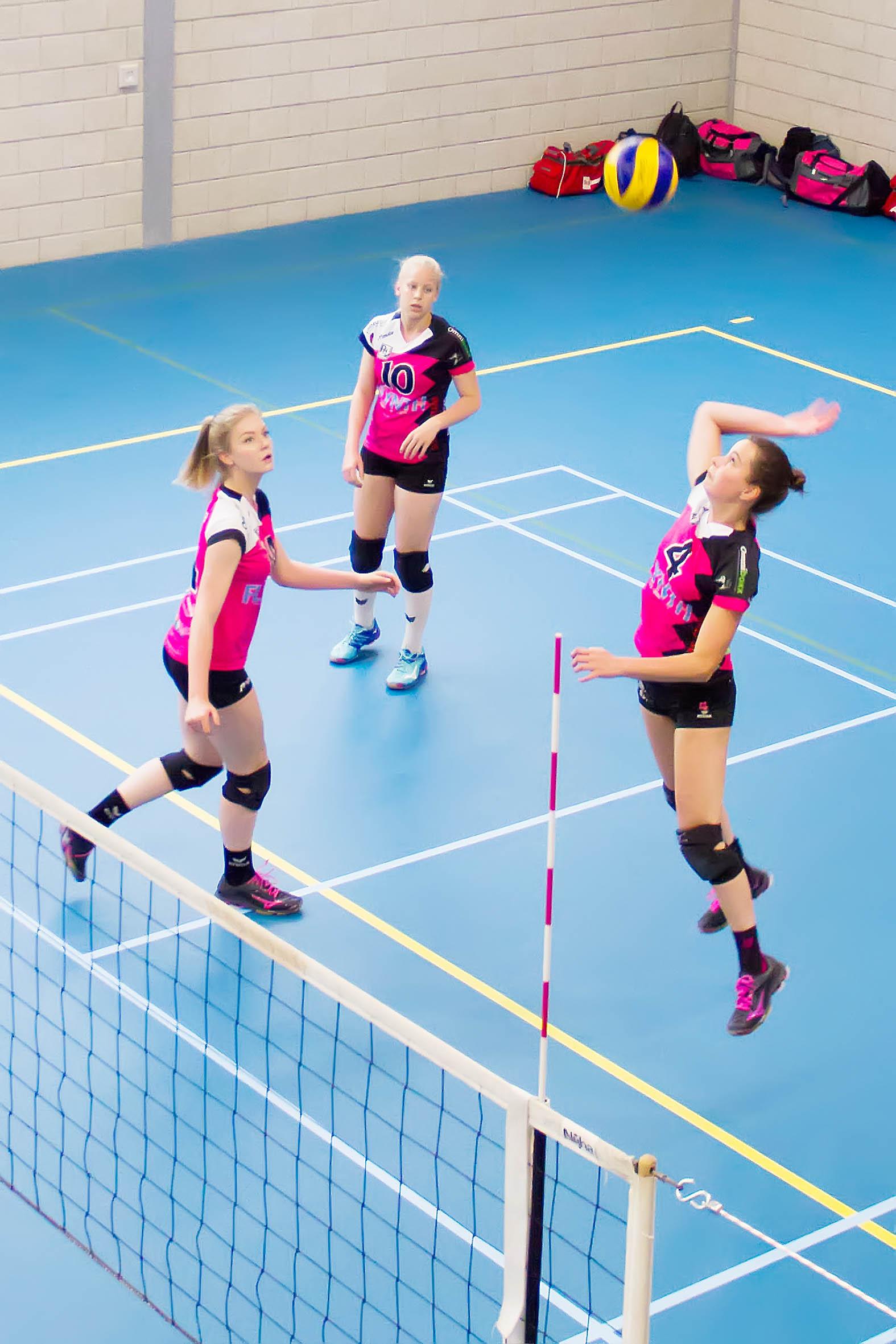 Volleybal op Eredivisie niveau